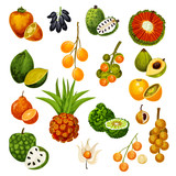 Exotic tropical fruits, vector icons