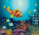 Coral reef, fish, underwater sea life.