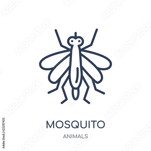 Mosquito icon. Mosquito linear symbol design from Animals collection. - 233117435
