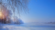 Frozen lake and snowy trees; Christmas winter Landscape