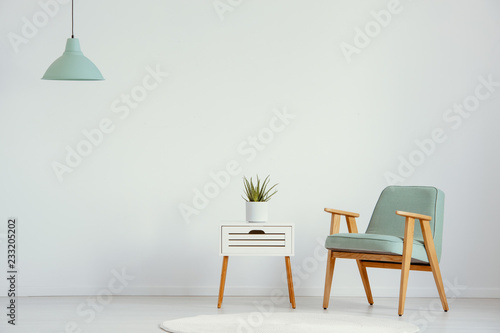 Plant on cabinet next to green wooden armchair in flat interior with lamp and copy space. Real photo © Photographee.eu