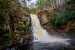Bushkill Falls - 233206201