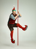 The happy smiling friendly man dressed like a funny gnome or elf posing on an isolated gray studio background. The winter, holiday, christmas concept - 233211241