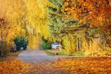 View of the empty autumn village street. - 233223891