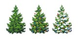 Vector illustration of decorated christmas tree in snow on white background. Green fluffy christmas pine, isolated on white background 1.4 - 233246423