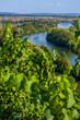 Blick von den Weinbergen über Volkach, das Maintal, den Main mit fahrendem Sportboot und die Mainschleife