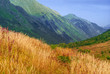 beautiful sunny mountain valley with autumn grass in the foreground