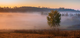 beautiful, misty sunrise over autumnal meadows and fields,beautiful play of light in the fog - 233254034