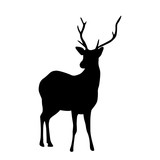 Deer with horns silhouette isolated on white background vector