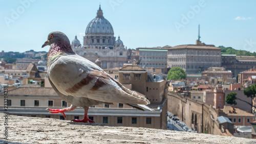 Widok na Bazylikę Świętego Piotra
