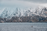 Fishing ship in fjord in Norway - 233287257