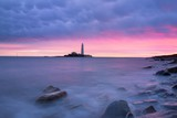 Morning at St. Mary's Island Lighhouse - 233294657