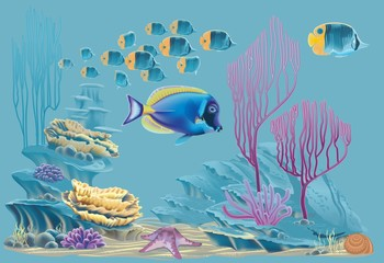 tropical fish in the sea