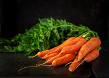 Bunch of fresh carrots with green leaves on  dark  background. - 233318031