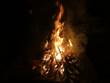 Offenes Feuer mit brennendem Tannenbaum - 233323009