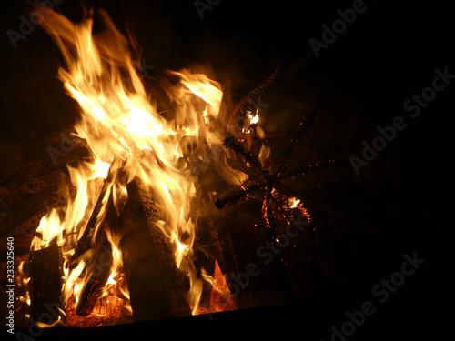 Offenes Feuer mit brennendem Tannenbaum - 233325640