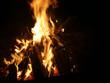 Offenes Feuer mit brennendem Tannenbaum - 233325873