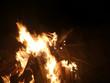 Offenes Feuer mit brennendem Tannenbaum - 233326054