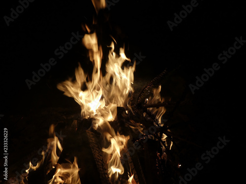 Offenes Feuer mit brennendem Tannenbaum - 233326229