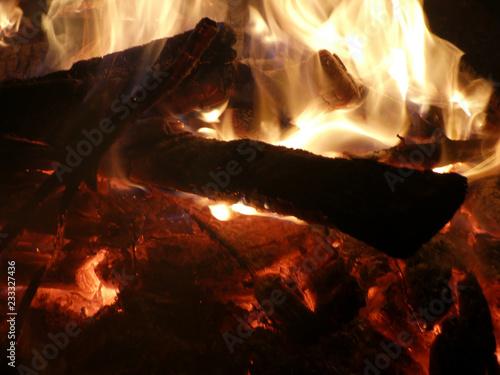 Offenes Feuer mit brennendem Tannenbaum - 233327436