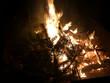Offenes Feuer mit brennendem Tannenbaum - 233327884