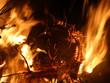 Leinwanddruck Bild - Offenes Feuer mit brennendem Tannenbaum