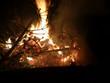 Offenes Feuer mit brennendem Tannenbaum - 233328493