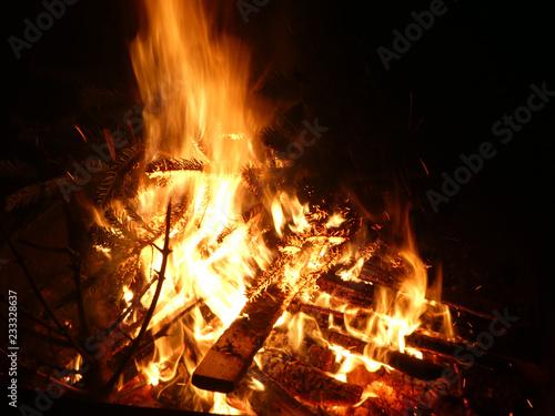 Offenes Feuer mit brennendem Tannenbaum - 233328637