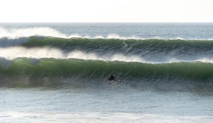 surfeur © nicolas