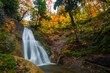 Waterfall among many foliage, In the fall leaves Leaf color change In Yamagata, Japan - 233371434