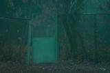 metal old door leading to the evening autumn garden lies foliage - 233397606