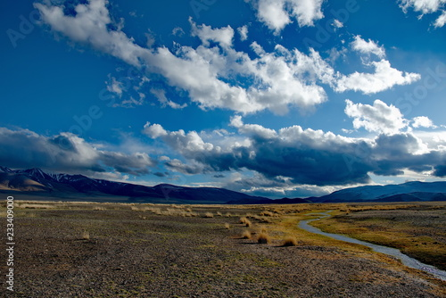 Wall mural Western Mongolia. Sparse vegetation of high-mountain steppes