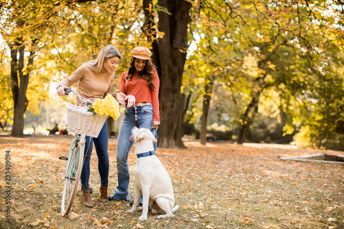 Two female friends walking in the autumn park with dog and bicycle