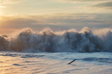 Foamy wave at the sunset beach - 233425494