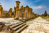Al-Bass Archaeological Site Tyre Sur in South Lebanon Middle east - 233443227