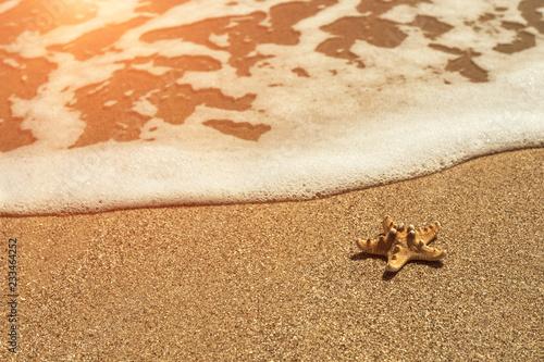 Foto Murales starfish on sea sandy beach at sunset.