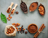Cocoa powder and cacao beans on concrete background. - 233503432