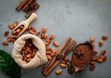 Cocoa powder and cacao beans on concrete background. - 233503438