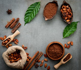 Cocoa powder and cacao beans on concrete background. - 233503468