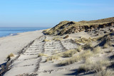 Dunes protection on the island of Sylt - 233553043