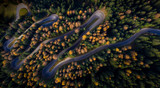 Aerial view of curvy road in autumn forest - 233565059