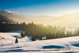 beautiful winter landscape in mountains. glowing fog above the forest on snow covered hills. beautiful bright scenery - 233575475