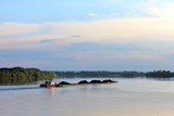 Tugboat pulling heavy loaded barge of black coal along the green trees on the shore of Danube river - 233579828