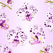 Seamless texture Orchids Phalaenopsis with purple and white dots   closeup beautiful flower  isolated vintage  vector illustration editable  hand draw