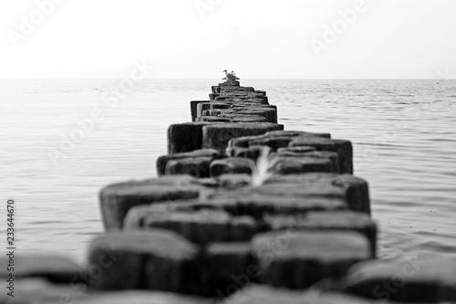 Acrylglas Pier beach wooden fence