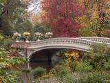 Bow Bridge in autumn © John Anderson
