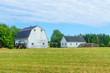 Countryside near Freeland, PEI