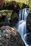 A Small Waterfall in the Mountains of California - 233702250