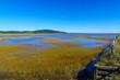 Marshland view in Hopewell Hill, New Brunswick