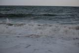 mer © canecorso